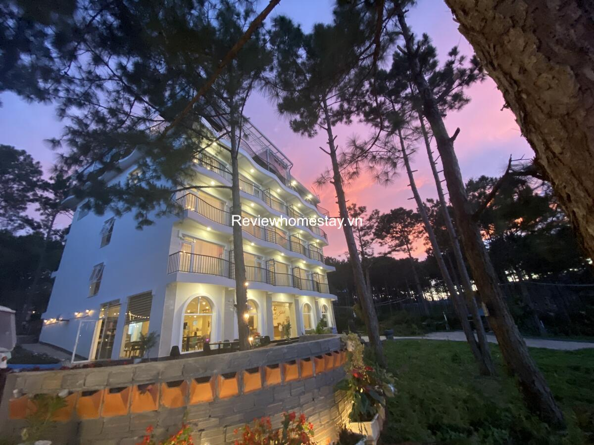 Top 15 Resort khách sạn villa homestay Hồ Tuyền Lâm giá rẻ view đẹp